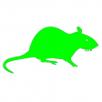 Avatar de greenrat