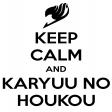 Avatar de karyu_no_houkou