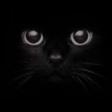 Avatar de gatoacato